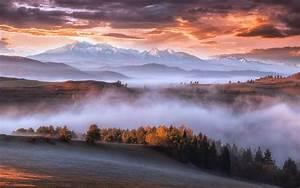 Wallpaper, Carpathians, Mountains, Trees, Fog, Morning