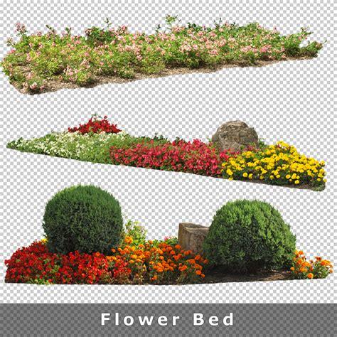 cutout plants  graphics  architecture visualization