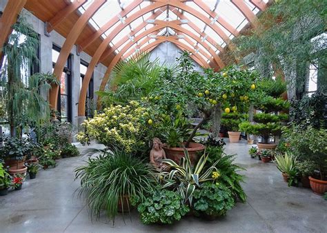 greenhouse courtyard google search indoor gardens greenhouse plants