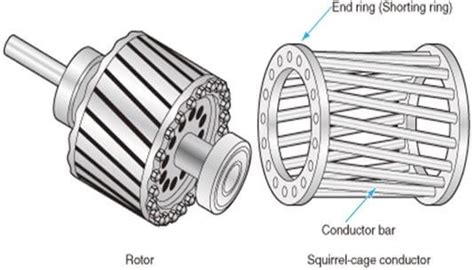 squirrel cage induction motor working principle construction and application pnpntransistor
