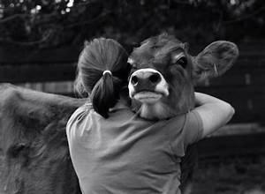 The Wild Hug : 40 heart touching animals and humans hug pictures ~ Eleganceandgraceweddings.com Haus und Dekorationen