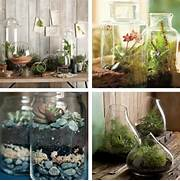 Indoor House Decorating Ideas Decorations Adorable Hand Crafted Indoor Plants Decoration Ideas