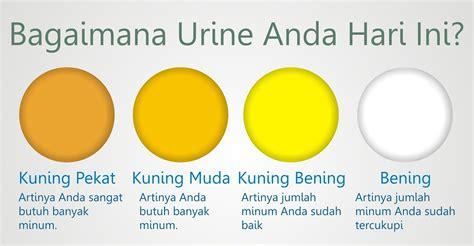 Wanita Hamil Apakah Bisa Haid 10 Tanda Kesehatan Berdasarkan Warna Urine Tanda Kesehatan