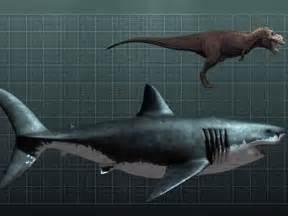 Shark Week Megalodon