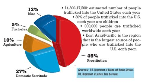 bureau of statistics united states human trafficking pie chart simcenter wrsc org