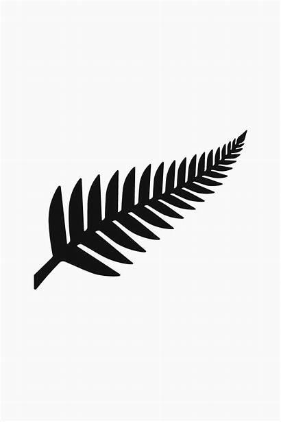 Zealand Flag Fern Symbol Tattoo Represents Maori