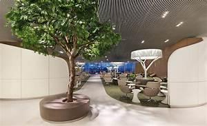 Arbre D Intérieur : arbre d int rieur salon l 39 atelier des fleurs ~ Preciouscoupons.com Idées de Décoration