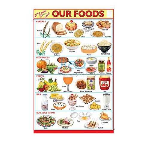 food chart india  food chart manufacturer  food chart suppliers  exporters  india