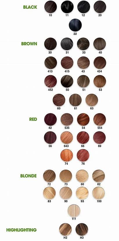 Garnier Nutrisse Blonde Hair Golden Shade Creme