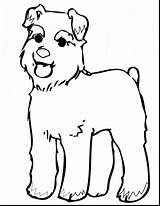 Coloring Schnauzer Pages Miniature Dog Printable Mutt Schnauzers Rebel Drawing Dogs Mini Pinscher Clipart Stuff Puppy Cliparts Pic Colouring Sheets sketch template