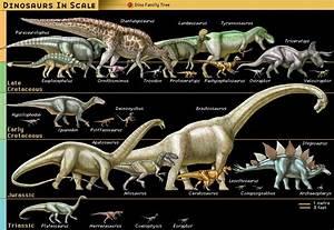 Dinosaur Fossil Reptile Britannicacom