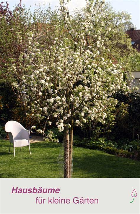 Zäune Für Den Garten by Ein Baum F 252 R Den Garten Desmondo Wohnen