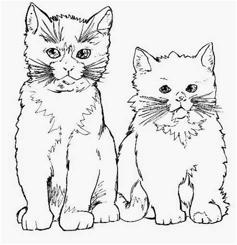 latihan mewarnai gambar kucing yang lucu dan imut