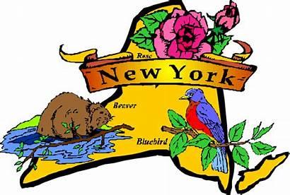 Clipart York State Symbols Places Beaver Rose