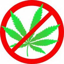 Résultat d'images pour no marijuana