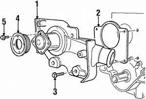 Mercury Mystique Engine Water Pump Pulley  2 0 Liter  2 0