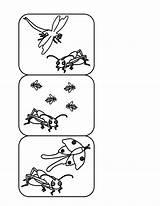 Coloring Quiet Activities Very Cricket Template sketch template