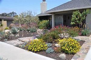 drought tolerant landscaping ideas california san diego With make simple fresh and modern drought tolerant landscaping
