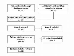 The Systematic Review Process