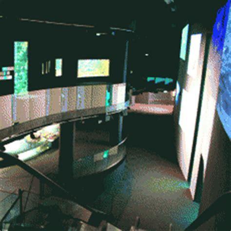 brunch aquarium de brunch aquarium de 28 images les dna au pays des caribous 2 mini a brunch a l aquarium
