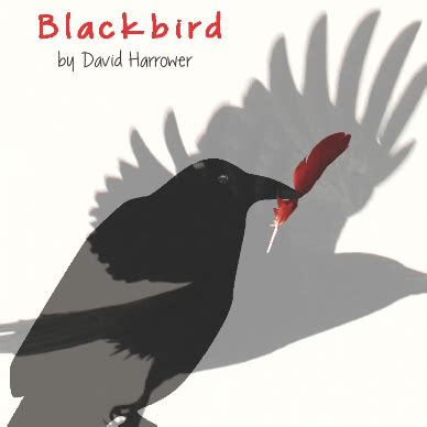 blackbird play plot