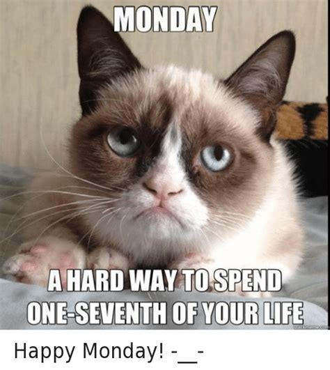Grumpy Cat Monday Meme - monday a hard way to spend one seventh of your life me happy monday life meme on sizzle
