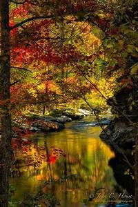 U0026quot, Autumn, Afternoon, U0026quot, In, The, Cherokee, National, Forest, In, Tennessee, By, John, House, Via, Flickr