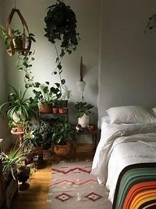 Indoor Hanging Plants Low Light 4 Tricks To Growing Happy Houseplants In Dark Apartments