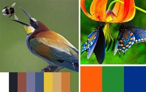 33 Orange Color Schemes, Inspiring Ideas for Modern