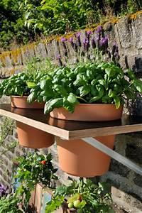 Tomaten Selber Anbauen : do it yourself tomaten anpflanzen haengekultur ~ Orissabook.com Haus und Dekorationen
