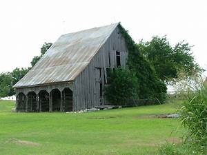 Old Wooden Barn With Ivy