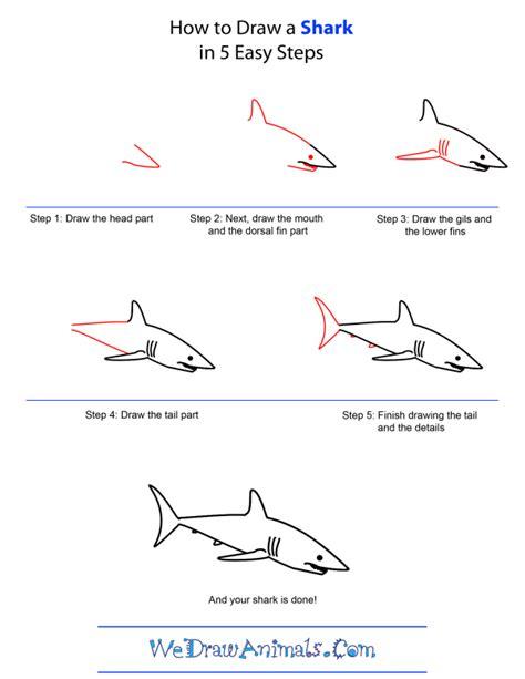 draw shark art artists shark drawing