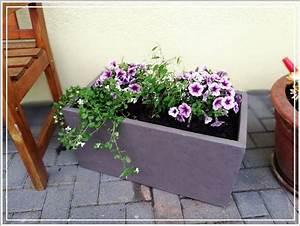 Blumen Für Garten : garten blumen sommer pflanzk bel von pflanzwerk redroselove mein lifestyleblog ~ Frokenaadalensverden.com Haus und Dekorationen