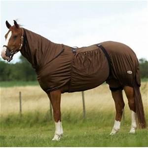 Chemise Anti Mouche Cheval : chemise anti mouches esprit equitation ~ Melissatoandfro.com Idées de Décoration