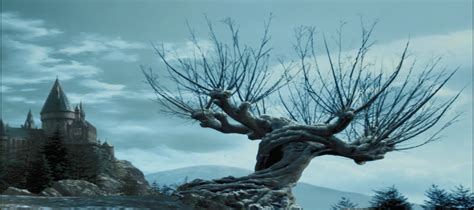 image whomping willow winterpng harry potter wiki