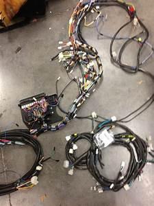 Countach Wiring Diagrams  U0026 Workshop Data