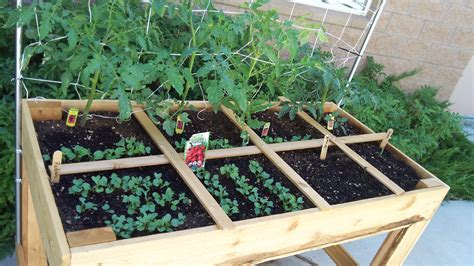 square foot garden growing food with water restrictions garden inspire
