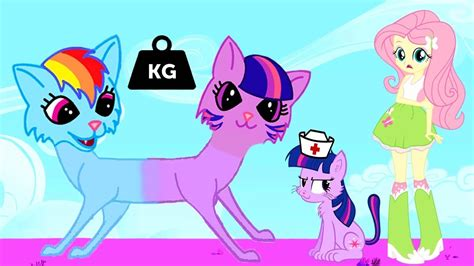Mlp Equestria Girls Cats Transforms Twilight Sparkle And