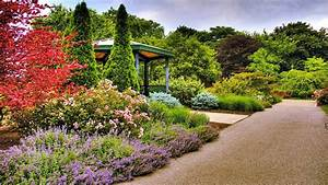 Refreshing Garden HD wallpaper