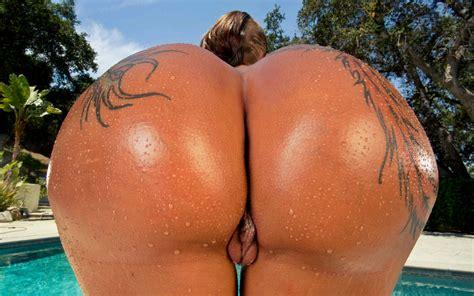 Wallpaper Bella Bellz Bella Bends American Pornstar Tattoo Close Up Oiled Up Buttrocks