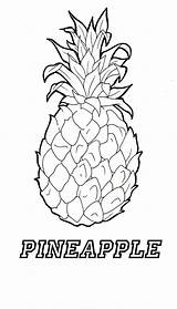Pineapple Coloring Template Adult Adults Stitch Apple Templates Getdrawings Coconut sketch template