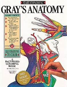 Gray's Anatomy: A Fact Filled Coloring Book by Freddy ...