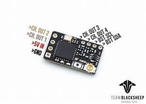 Team Blacksheep Online Store