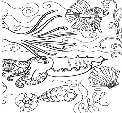 sea coloring pages  preschool coloring pages