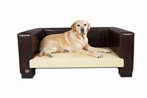 best dog sofa beds With dog sofa bed