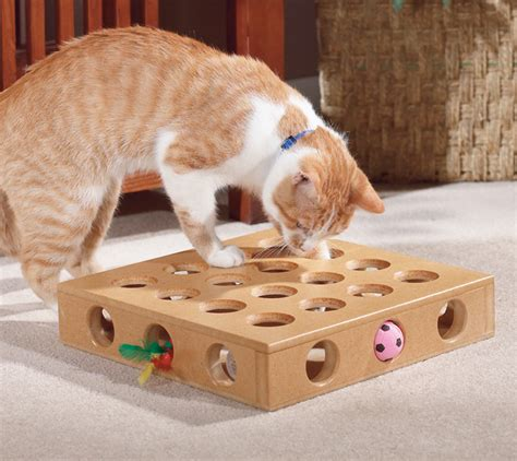 cat puzzle feeder 5 best interactive puzzle food for cats