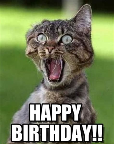 Happy Birthday Cat Memes - 76 funny happy birthday images free download bday wishes images