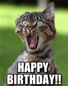 76+ Funny Happy Birthday Images Free Download ~ Bday ...