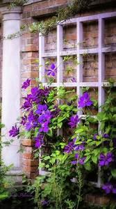 1000 idees sur le theme plante grimpante ombre sur With exceptional idee allee de maison 3 realisations jardins de vendee
