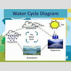 The Water Cycle Diagrams  Printable Diagram